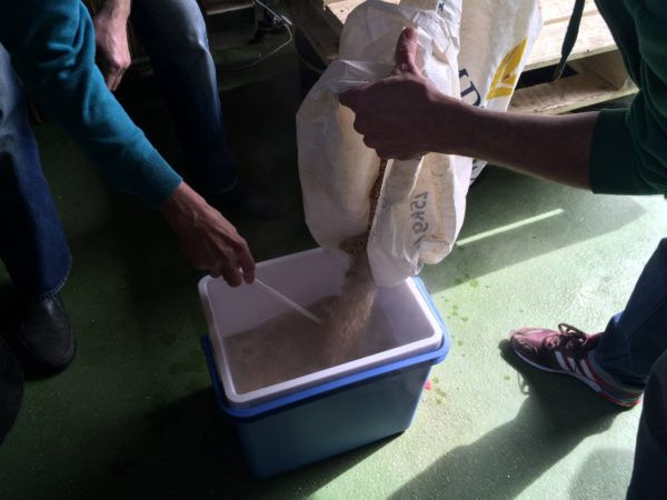 Adding malt