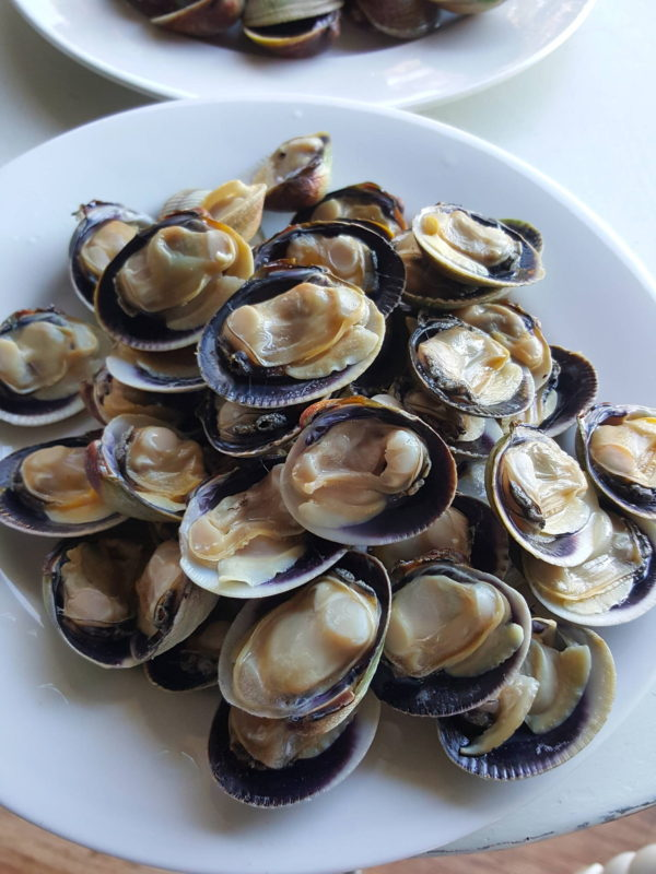 Southern clams in half shell