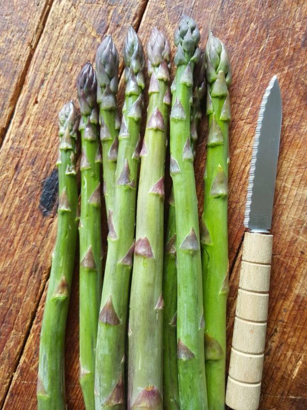 asparagus trimmed 1
