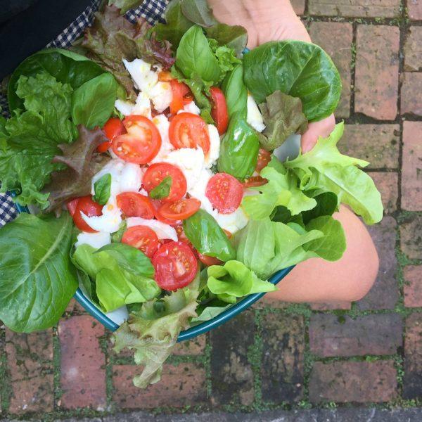 Summer Caprese Salad 1