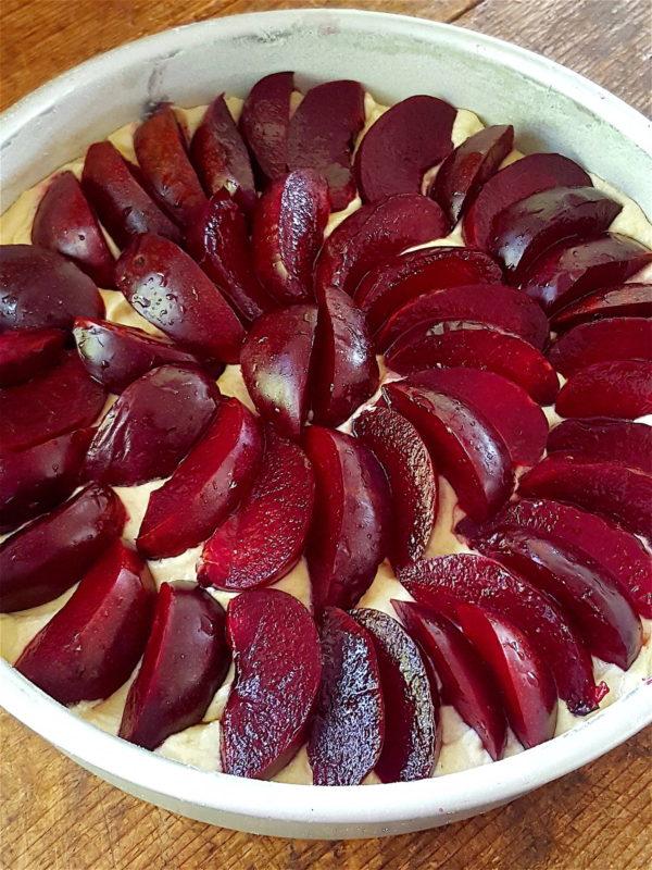 Plum & Almond Cake