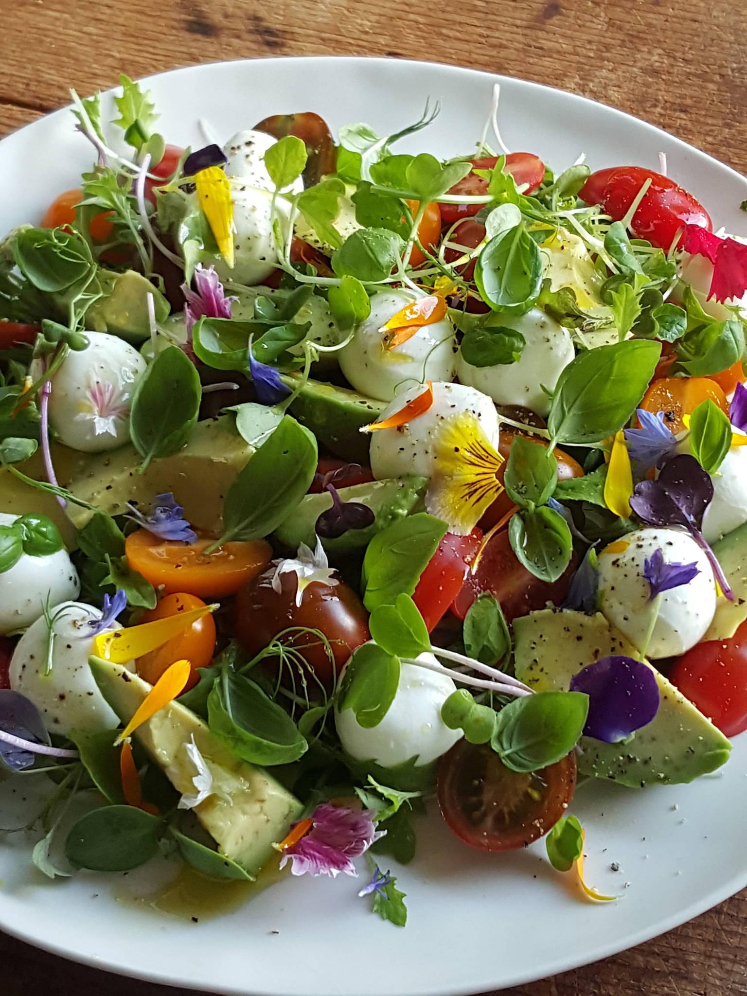Mozzarella & Tomato Salad Pretty as a picture